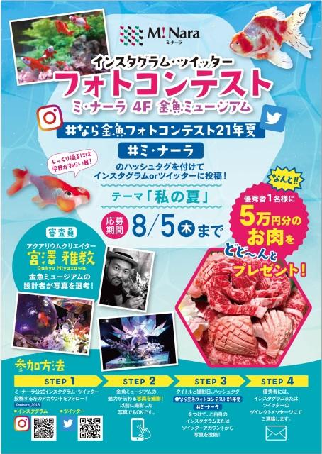 フォトコンテスト ~金魚ミュージアム~